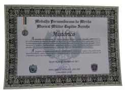 medalha Cap. Zuzinha -historico